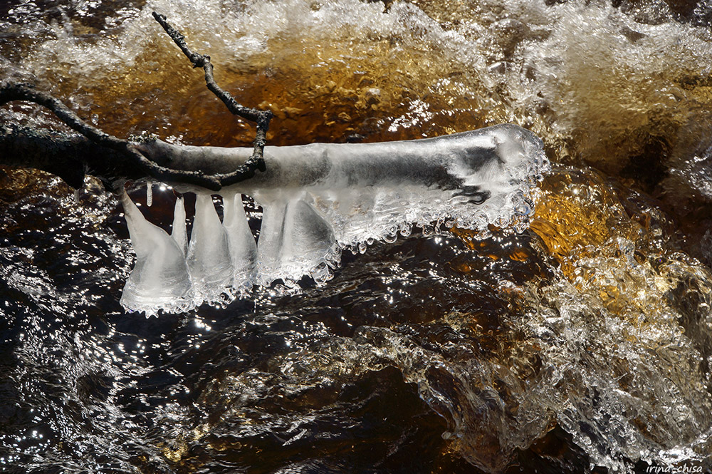 Линдуловская роща. Вода и образы - Три возраста девочки, вырезающей лепестки сакуры из рисовой бумаги — ЖЖ