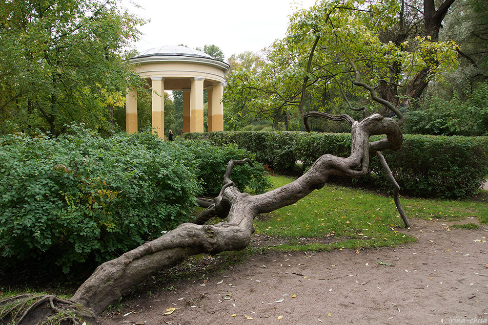 Екатерингофский парк