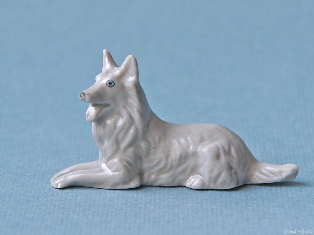 051 Овчарка бельгийская