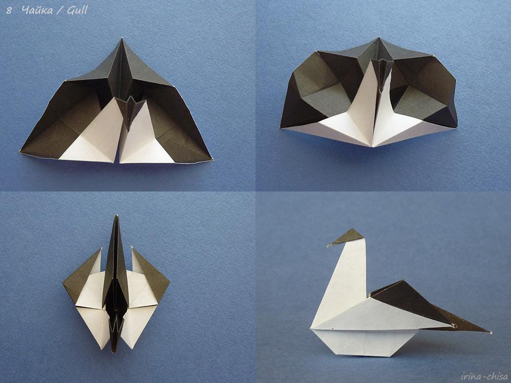 Gull-08