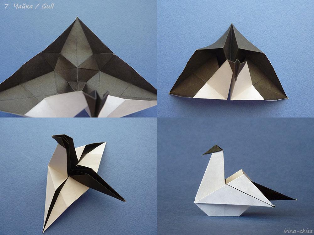 Gull-07