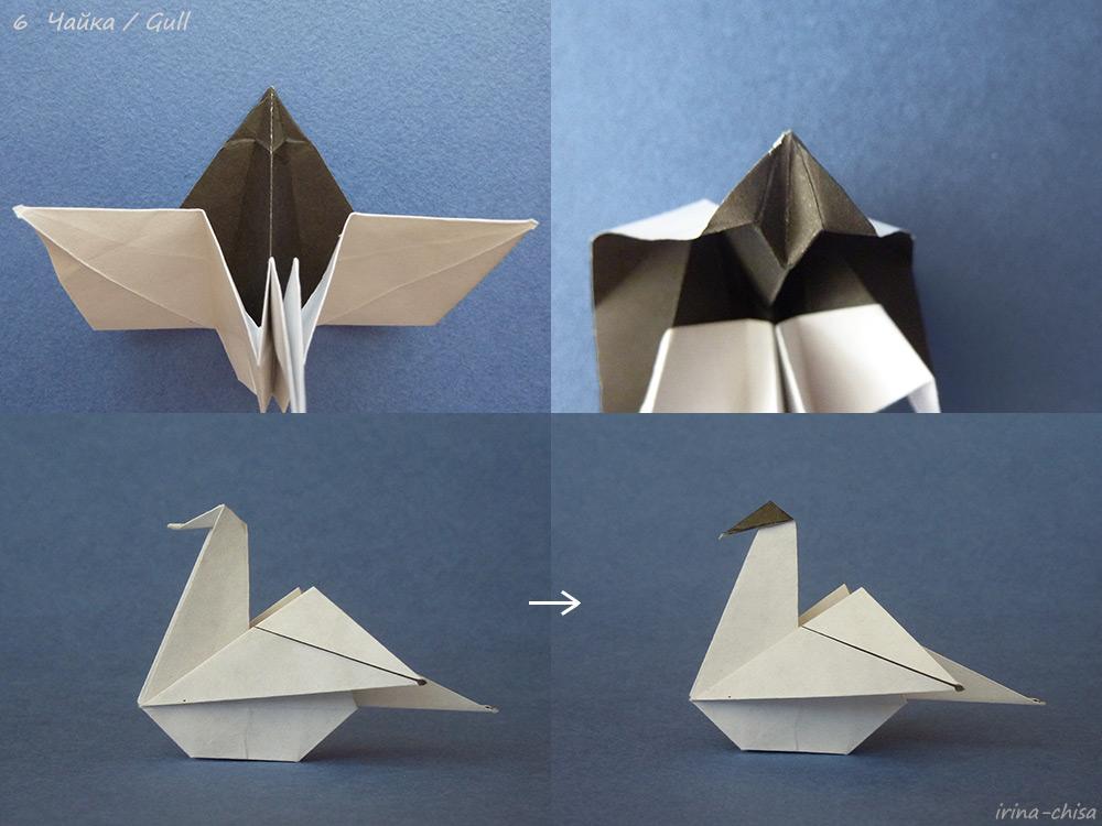Gull-06