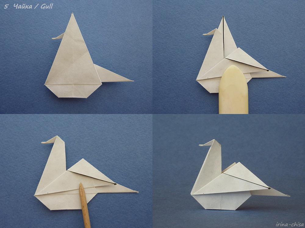 Gull-05