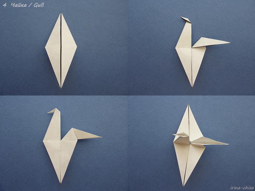 Gull-04