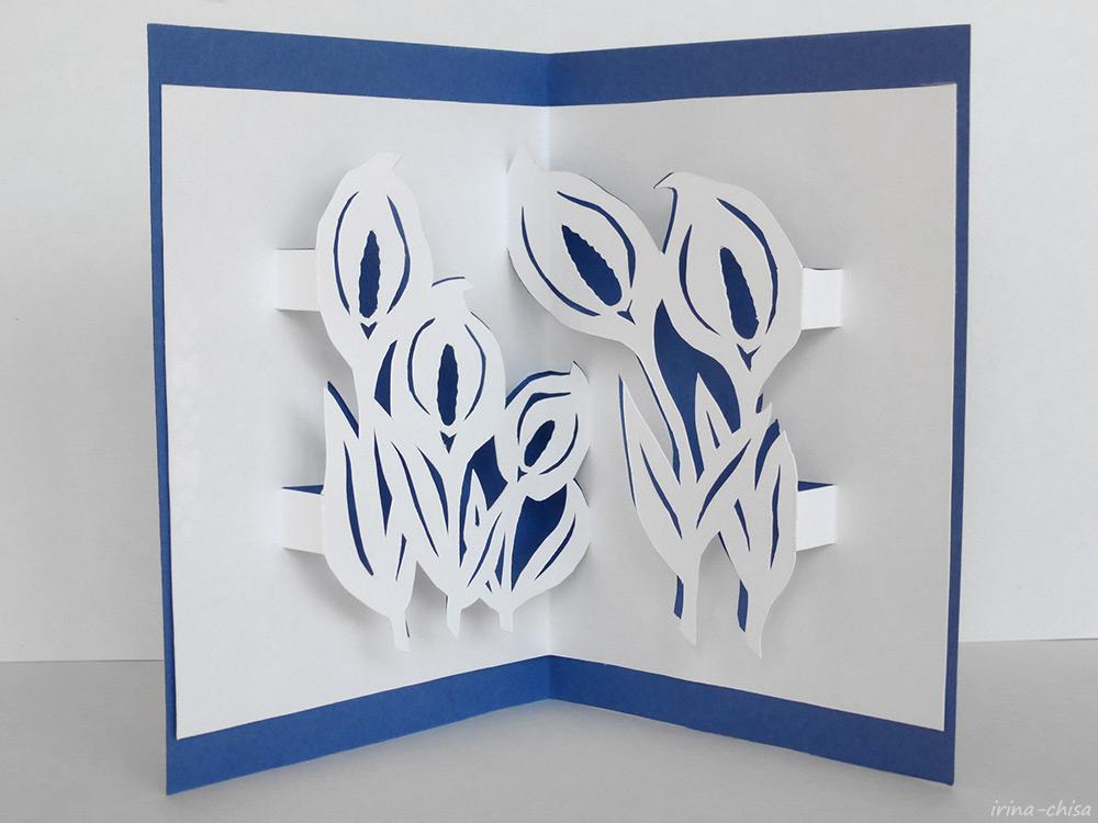 Японское киригами. Белокрыльник