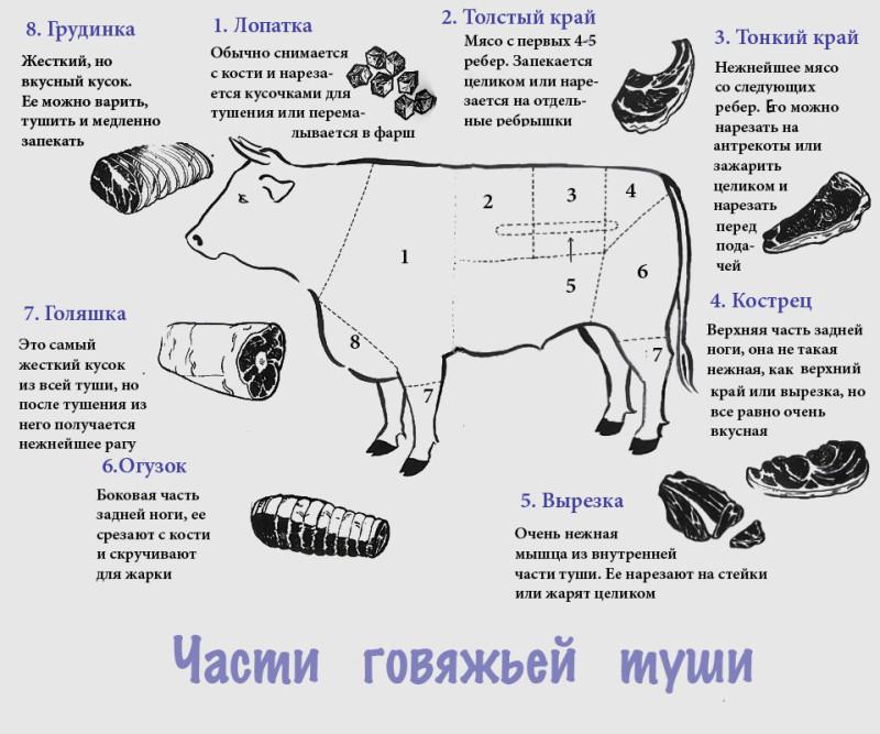 Какая часть говядины самая вкусная