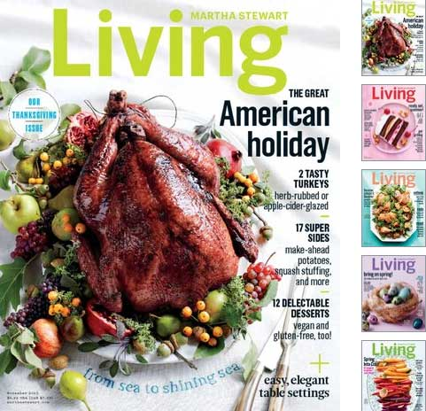 bf2015-magazines3
