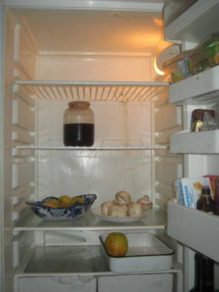 холодильниксж