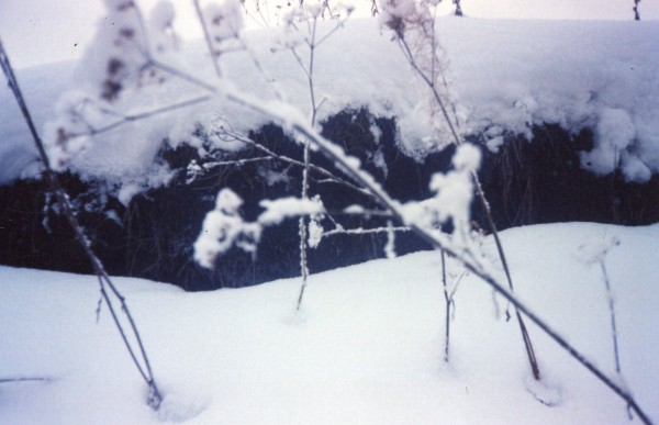 первый снег1