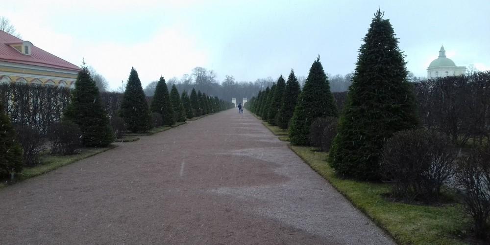 Нет, это не улочки Соснового Бора, это дорожка парка Ораниенбаум, по которой я недавно гуляла, добавленная в текст для романтизма