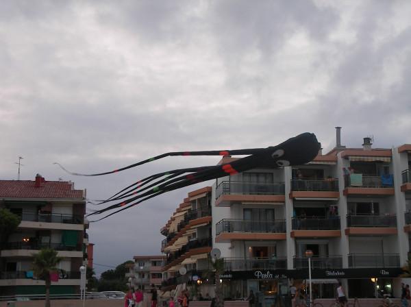 SANY0351