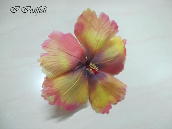 hibiscus_38