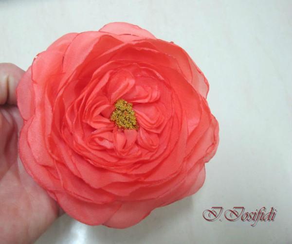 coral_rose_1