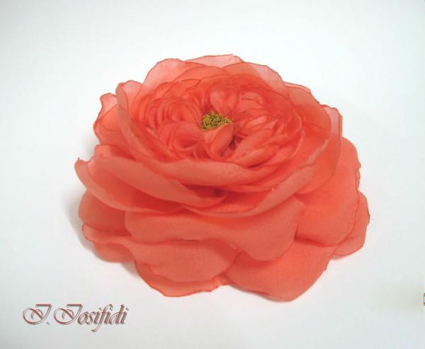 coral_rose_2