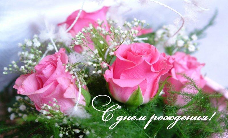 https://ic.pics.livejournal.com/iris_flower0802/32671158/355716/355716_original.jpg