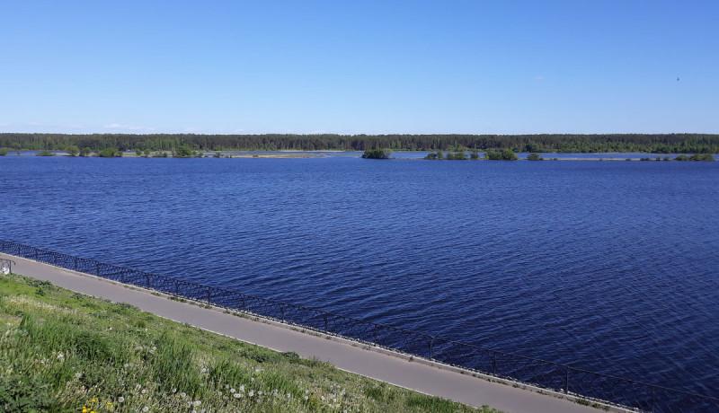 Просторная налитая Волга
