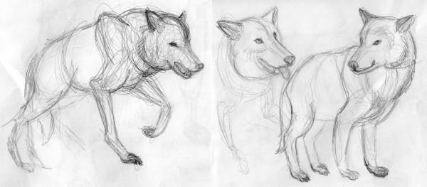 Волки3