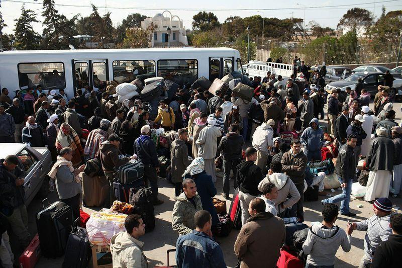 беженцы13