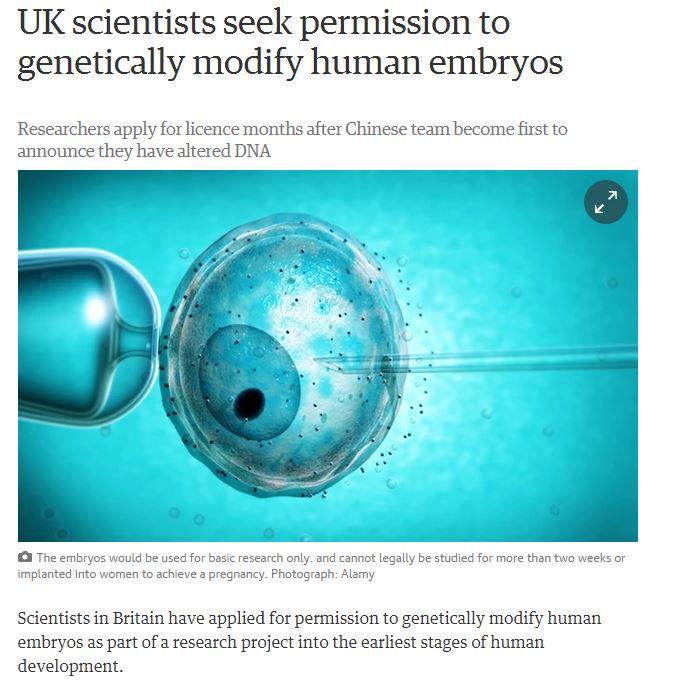 Институт имени Фрэнсиса Крика в Лондоне подал заявку на проведение экспериментов с генами человеческих эмбрионов