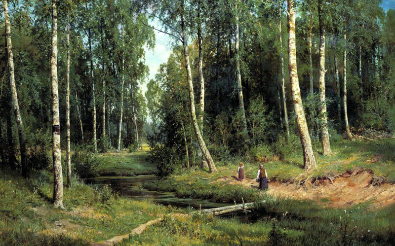 Шишкин Ручей в берёзовом лесу