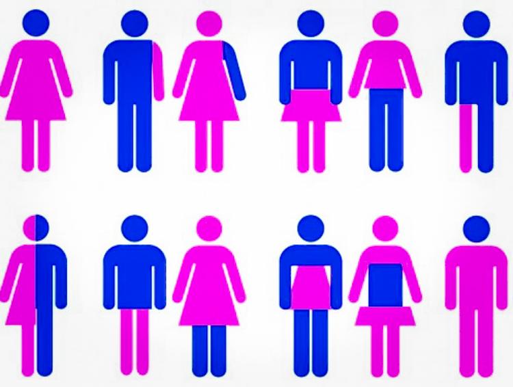 gender-i-seksualnost-sotsiologiya