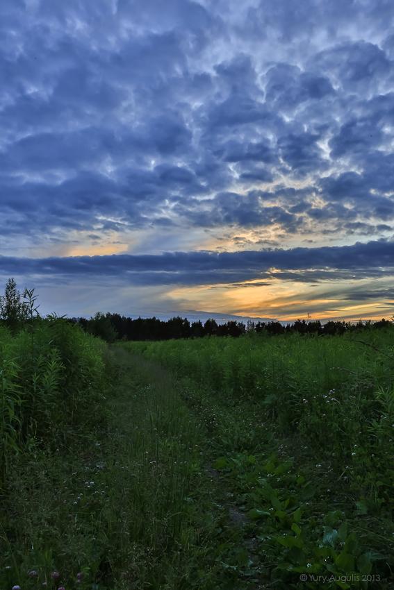 Закат в сине-зелёных тонах