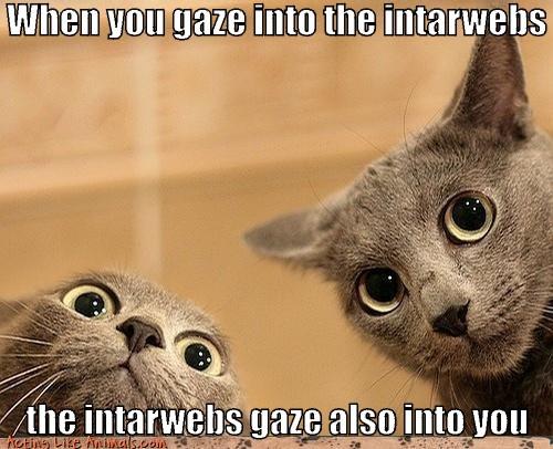 When you gaze into the intarwebs the intarwebs gaze also into you