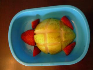 picnic turtle