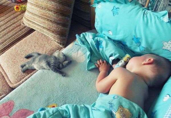 kids-animals-2