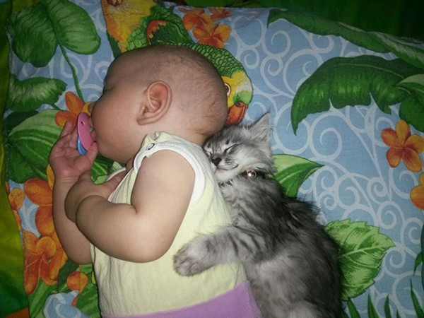 kids-animals-1