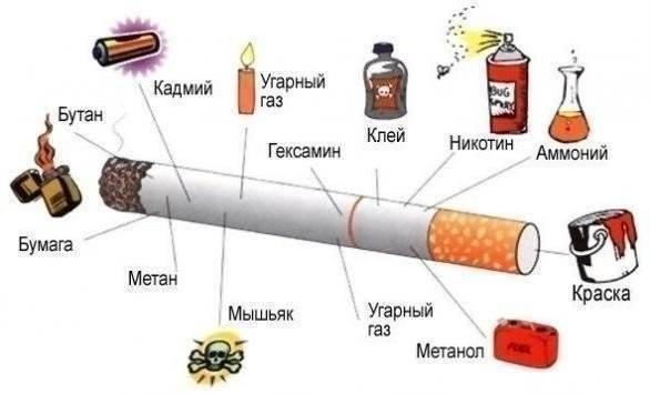 сигар3