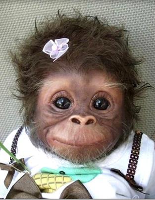 обезьяна3