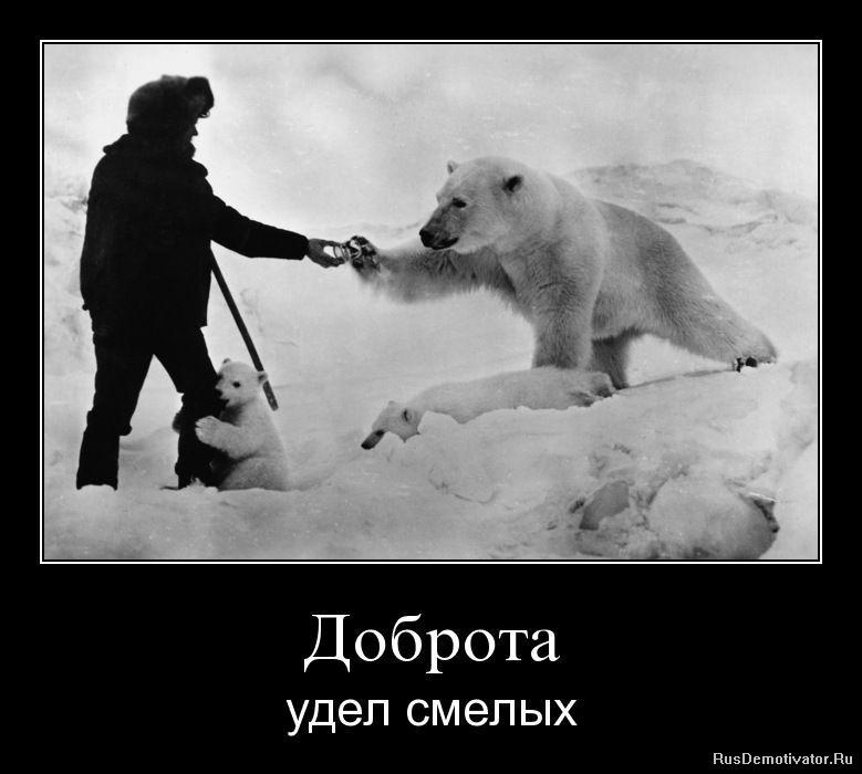 дружба11