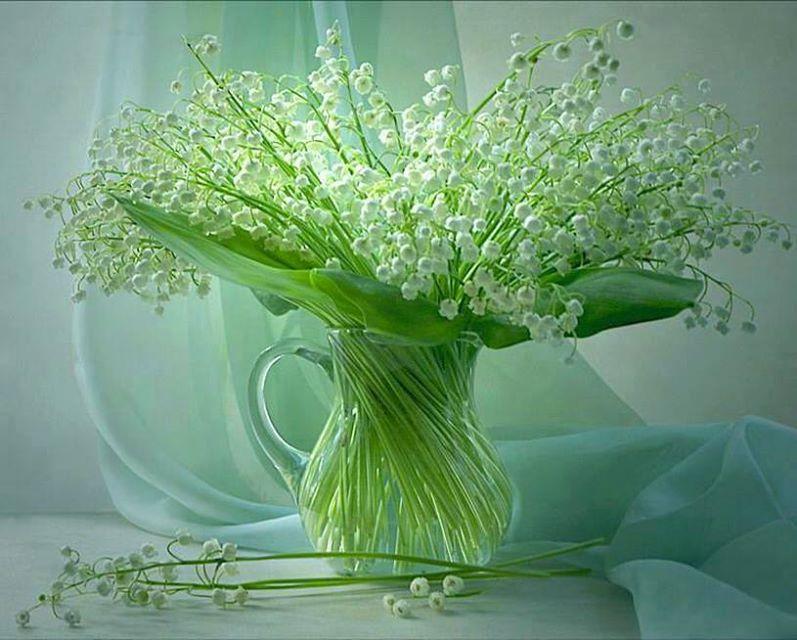 цветок12