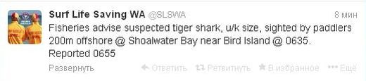 Австралийским акулам завели твиттер