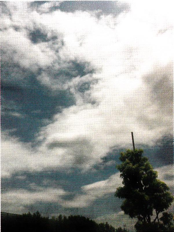 kamekamera19