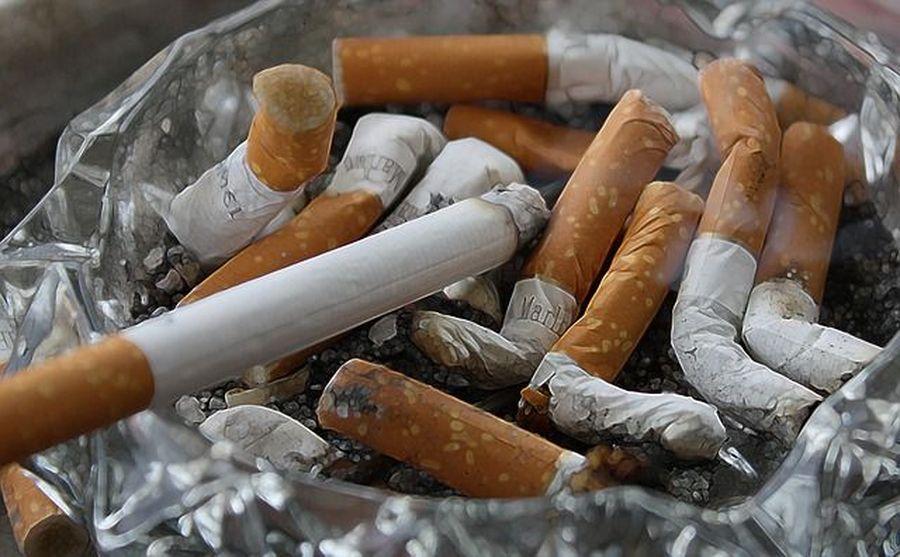 Курильщики любят плотно поесть?