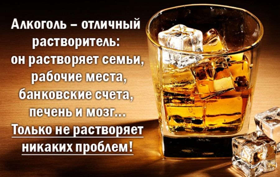 Пить или не пить – для многих не вопрос