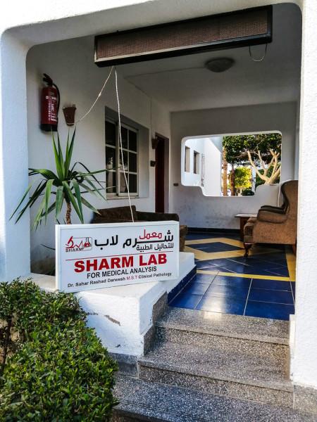 Квест: где сдать анализы в Шарме.