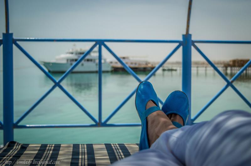 Один мой полурабочий день в Египте