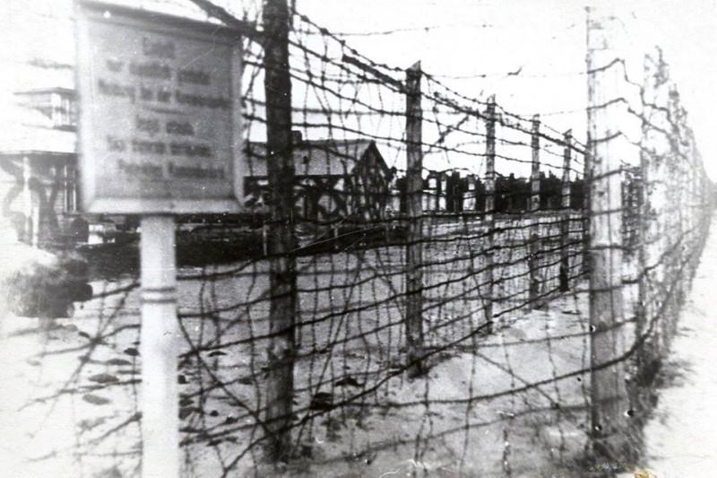 Проволочное заграждение Саласпилсского концлагеря (фото 1944 г.)