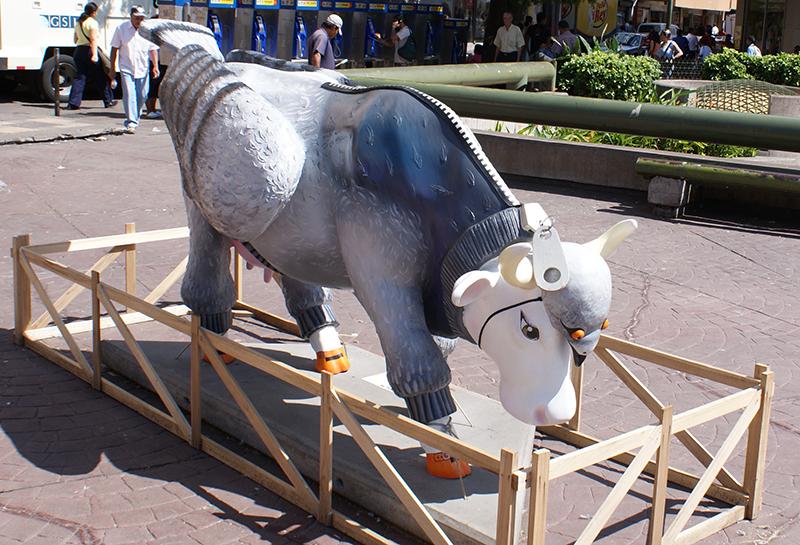 корова3