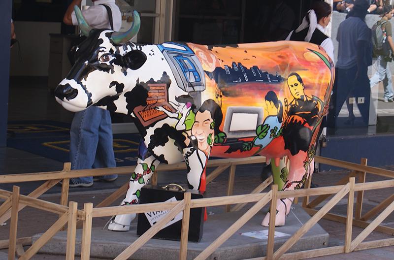 корова5