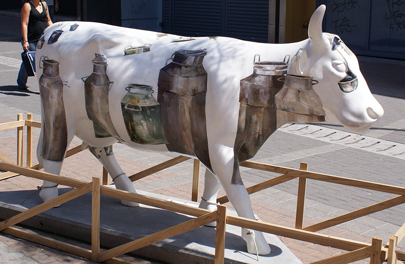 корова7