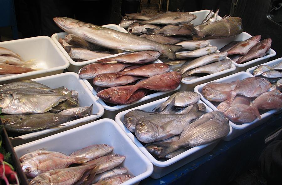 Ливан_рыба