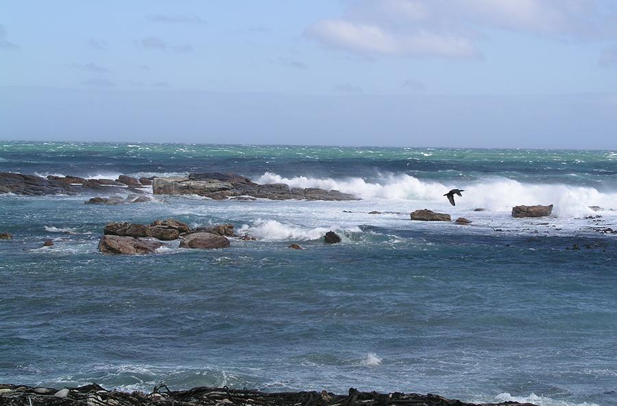 океан_еще волны