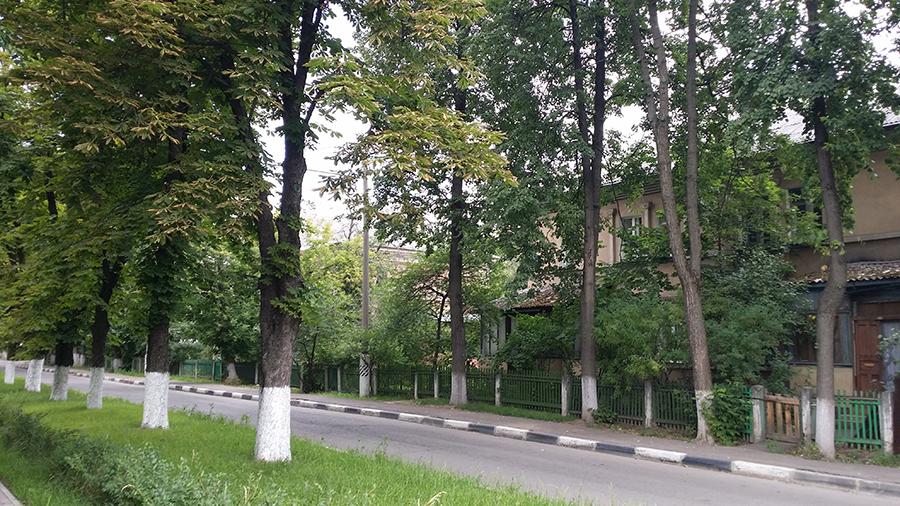 ленин и улиц