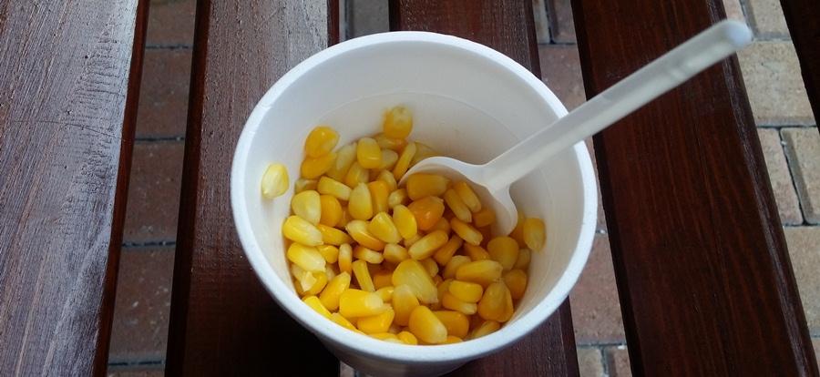 кукуруза2