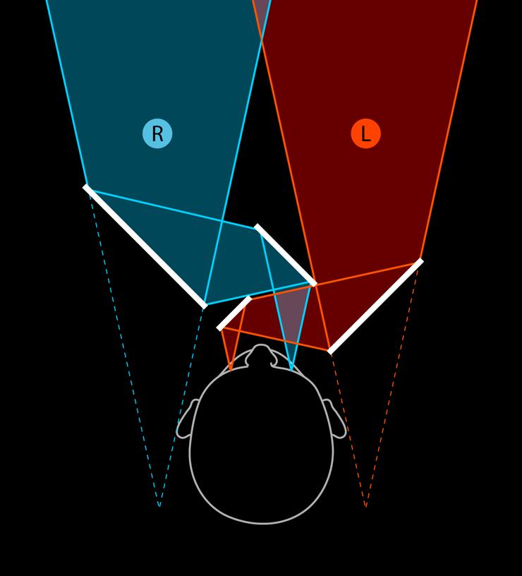 Псевдоскоп