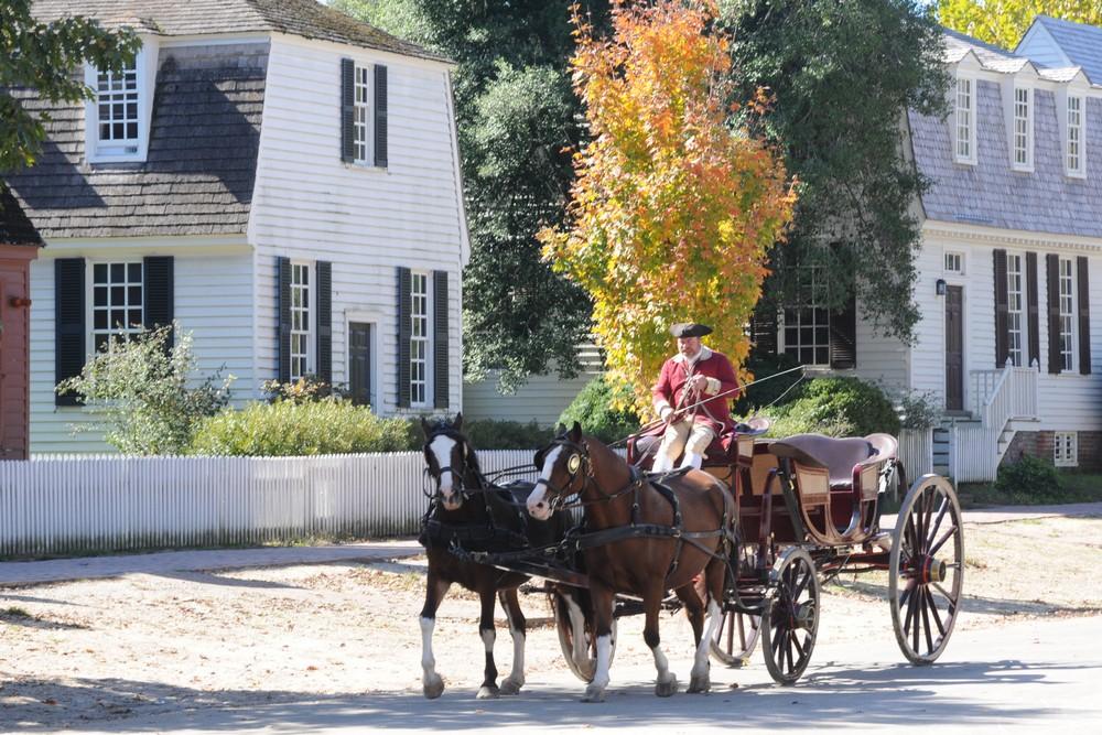 Экипаж с лошадьми в Вильямсбурге